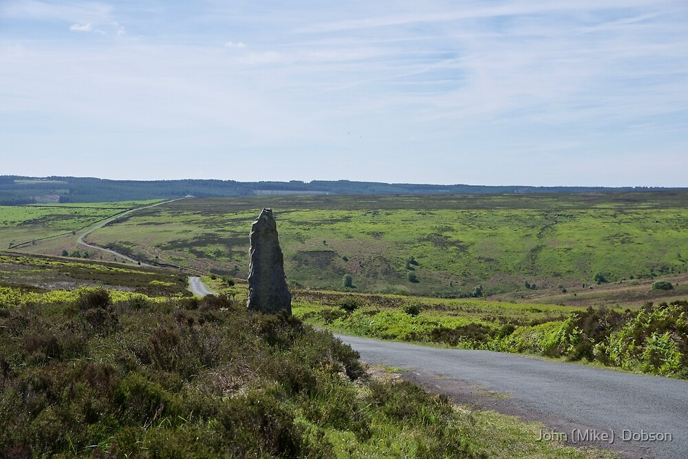 The North Yorkshire Moors by John (Mike)  Dobson