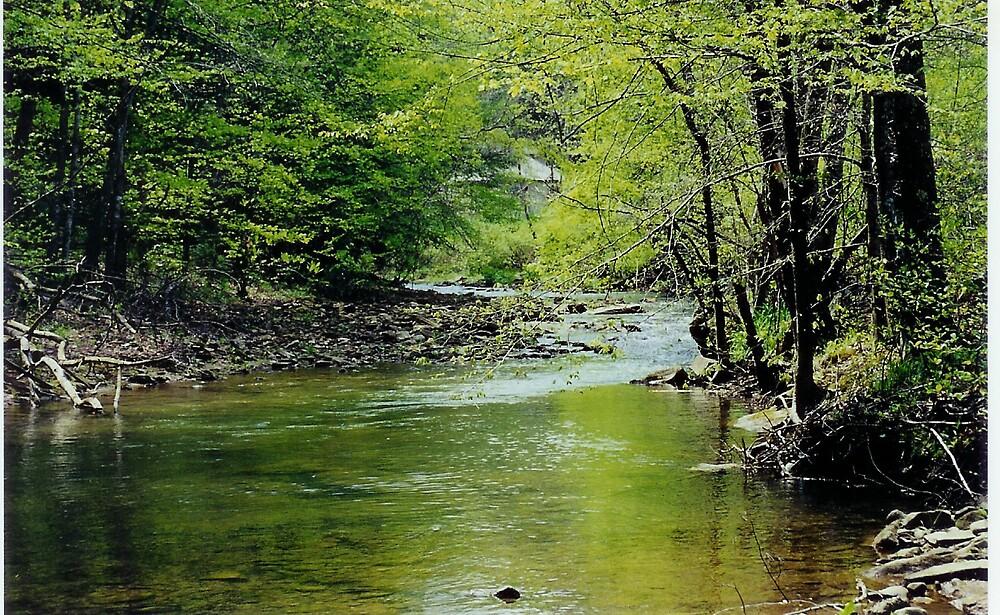my beautiful hell for certain creek by bhelfrcertn