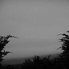 Dark Horizon by Atraxura