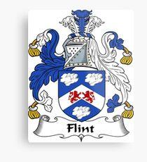 Flint Metal Print