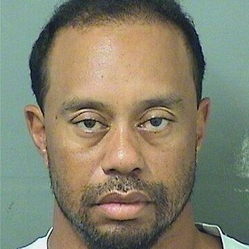Tiger Woods mug shot by GALAXE