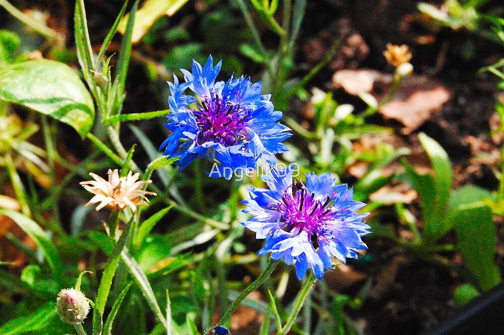 Blue Wild Flowers by Angelik99