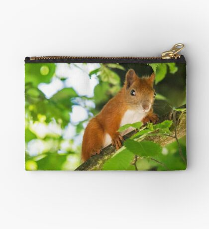Red Squirrel Studio Pouch