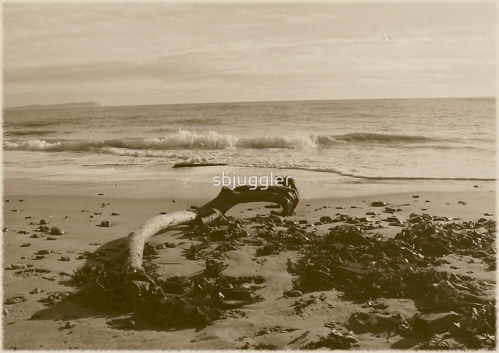 Dorset Beach Winter One by sbjuggler