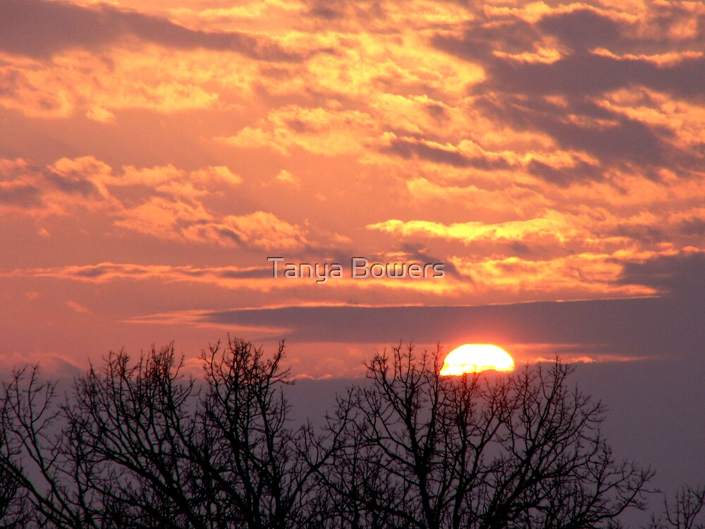 Early March Sunset by Tanya Bowers