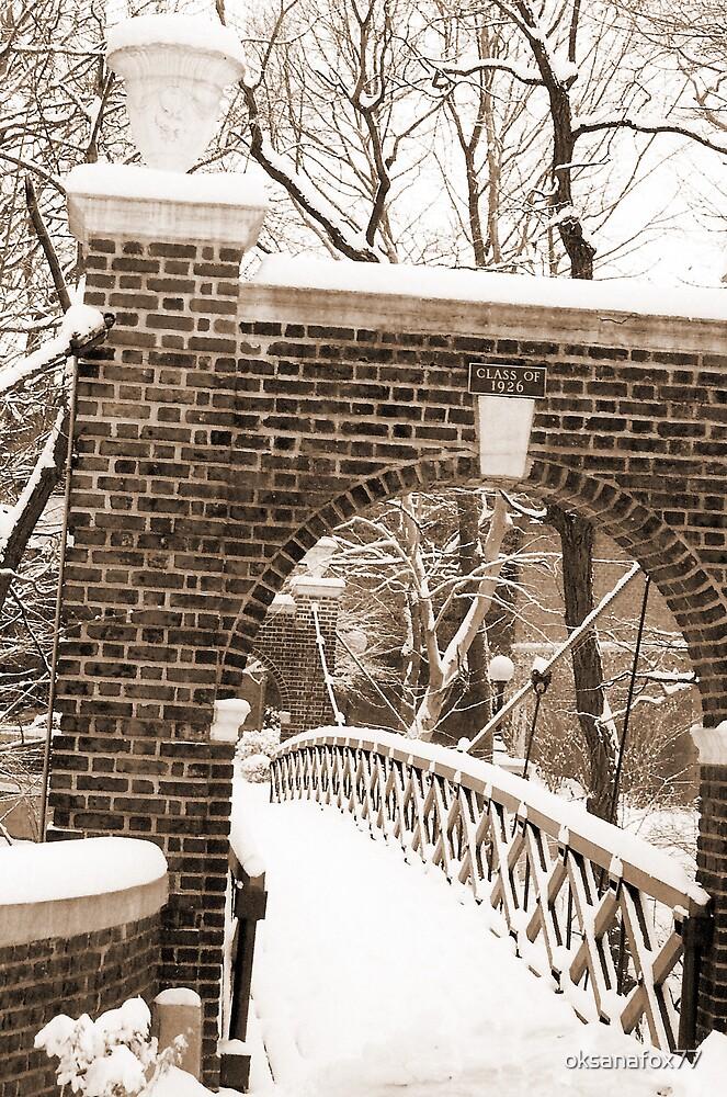 Bridge to Success by Vanessa Rooke