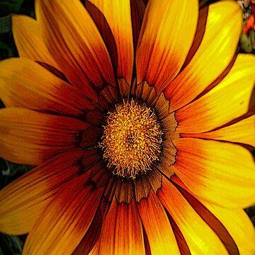 FloralFantasia 21 by oliverart