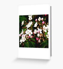FloralFantasia 23 Greeting Card