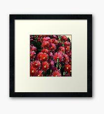 FloralFantasia 24 Framed Print