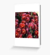 FloralFantasia 24 Greeting Card
