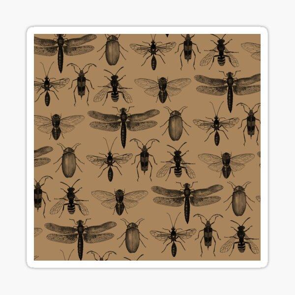 Entomology studies pattern Sticker