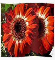 FloralFantasia 26 Poster