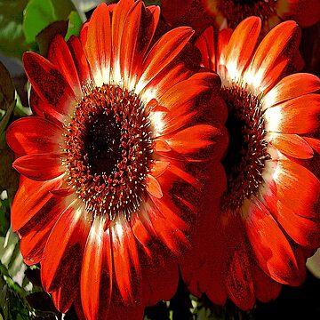 FloralFantasia 26 by oliverart