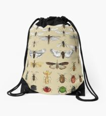Entomology Insect studies collection  Drawstring Bag