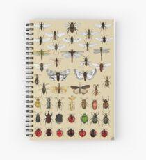 Entomologie Insektenstudien Sammlung Spiralblock
