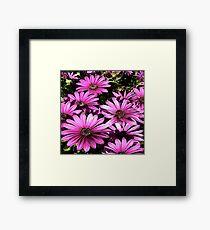 FloralFantasia 27 Framed Print