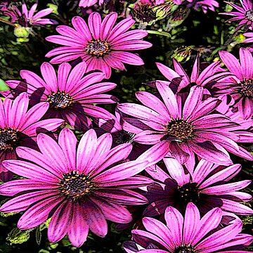 FloralFantasia 27 by oliverart