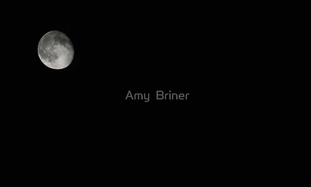 light of the moon by Amy  Briner