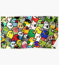 Everybirdy Pattern Poster