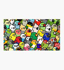 Everybirdy Pattern Photographic Print