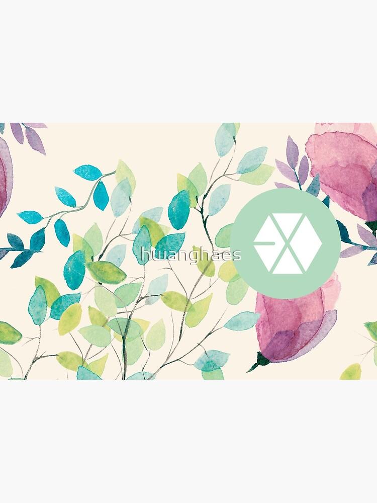 EXO von hwanghaes
