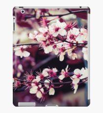 garden of cherry blossoms iPad Case/Skin