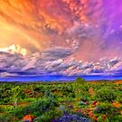 Storm On The Telegraph by Centralian Images