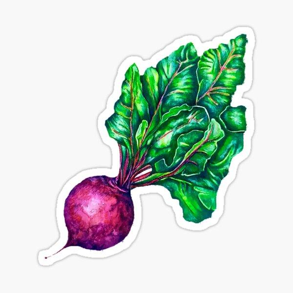 Garden Beet Sticker