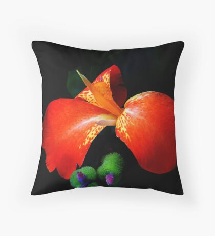 Yes I Canna! Throw Pillow