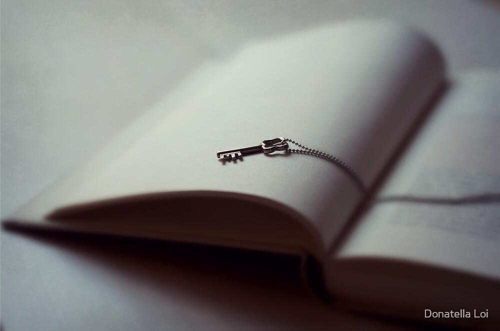 Silver Key on a open book by DonatellaLoi
