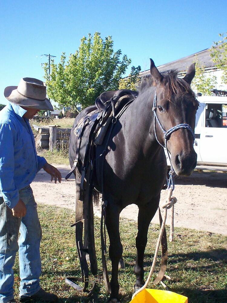 Saddle up by Chantel Martin