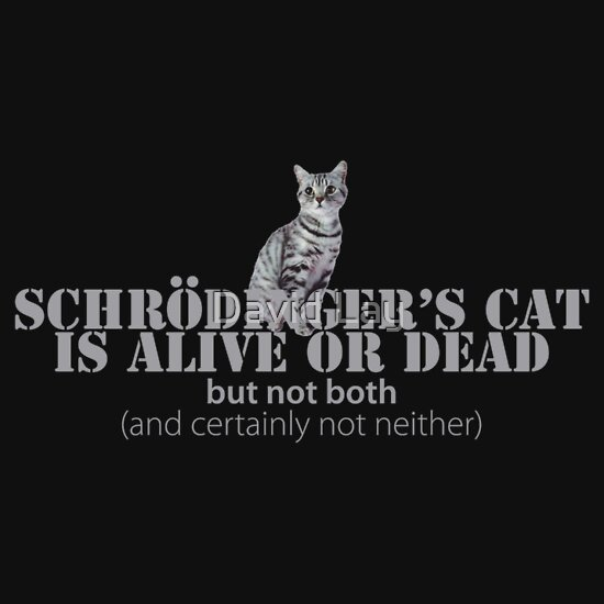 TShirtGifter presents: Schrdinger's Cat Is Alive Or Dead
