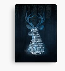Throne of Glass - The Stag, the Lord of the North Canvas Print