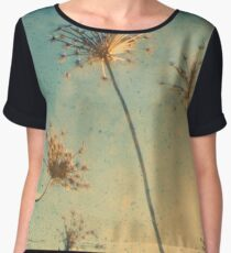 Reach for the Sky - Through The Viewfinder (TTV) Women's Chiffon Top