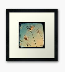 Reach for the Sky - Through The Viewfinder (TTV) Framed Print