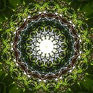 Tropical Leafy Green & Brown Mandala  by Framerkat