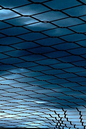 Fenced In by Rosina  Lamberti