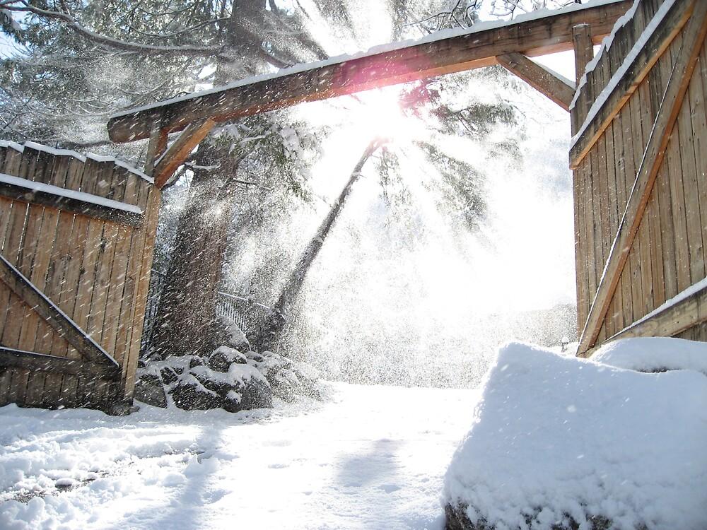 Winter Light by wscottfairbanks