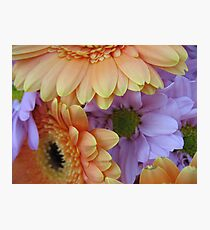May Flowers Photographic Print