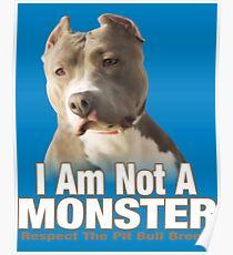 Pit Bull Respect Poster