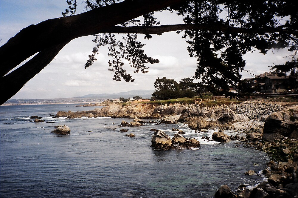Monterey Coast by Jerry Stewart
