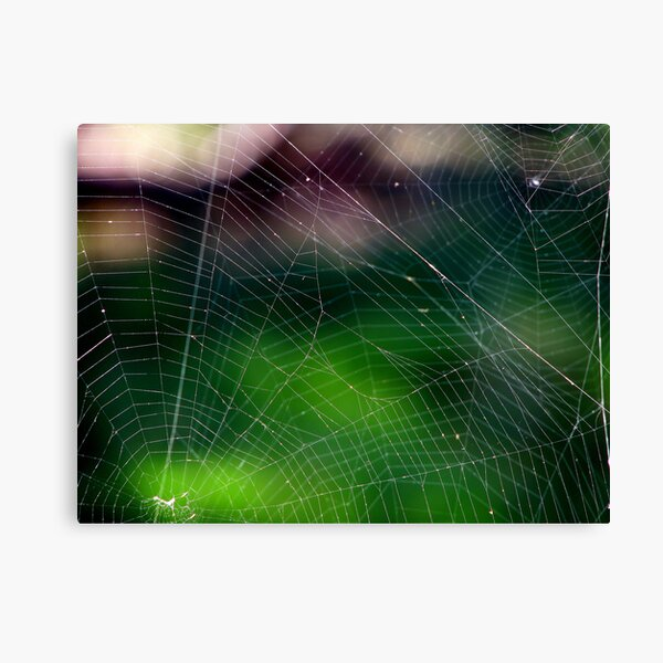Neighbours Canvas Print