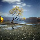 Lake Wanaka, New Zealand by BronwynBell