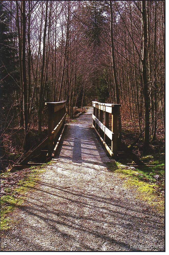 Bridge over Brook by carolssecrets
