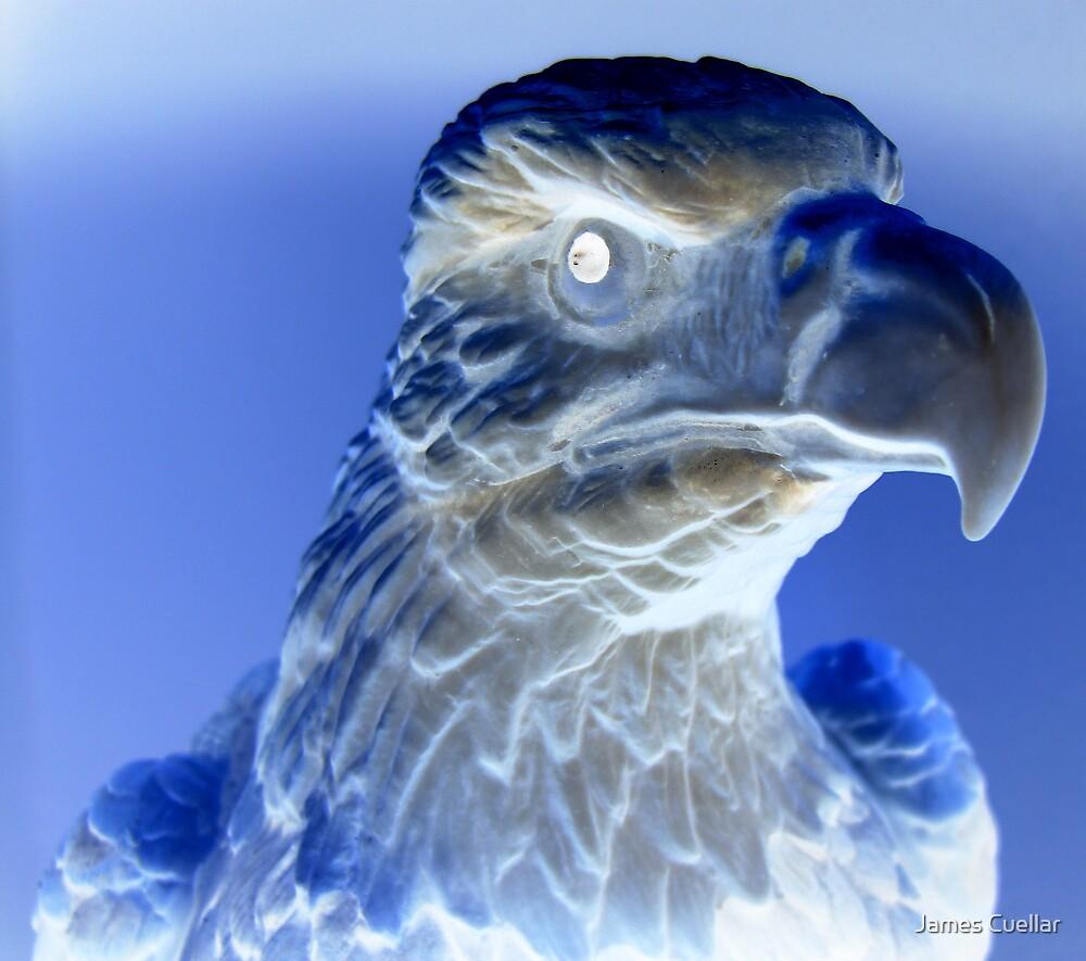 Bald Eagle in Negative by James Cuellar