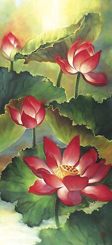 lotus3 by jaylee
