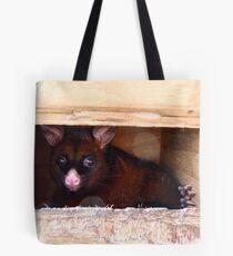 Close The Door!! I Don't Enjoy Sunlight.. Possum -NZ Tote Bag