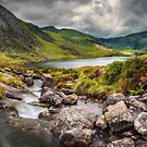 Tryfan In The Ogwen Valley by Adrian Evans