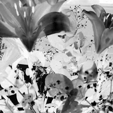 flowers after manray by edeology