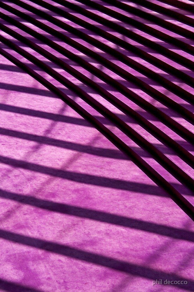 Deep Purple Shadows by phil decocco